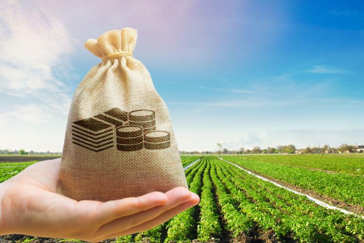 winst is basis continuïteit in de agrarische sector